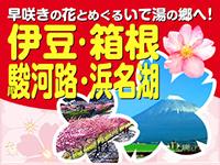 伊豆箱根キャンペーン
