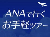 【首都圏・中部発】ANAで行く!お手軽ツアー