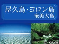 屋久島・ヨロン島・奄美大島