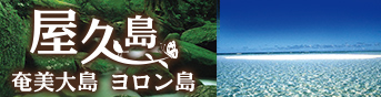 屋久島ヨロン島