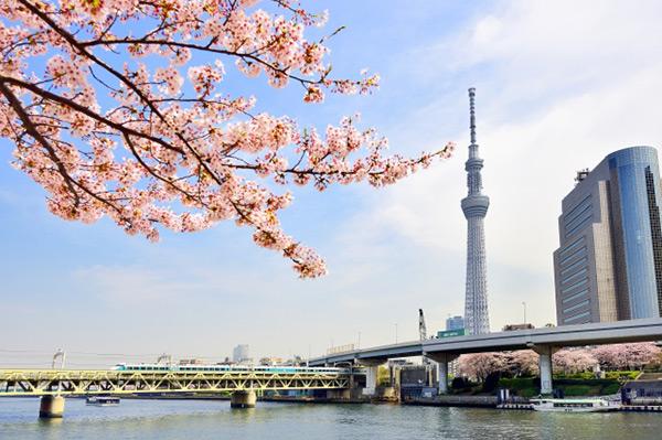 【東京ブックマーク】地下鉄24時間券で東京をめぐろう!